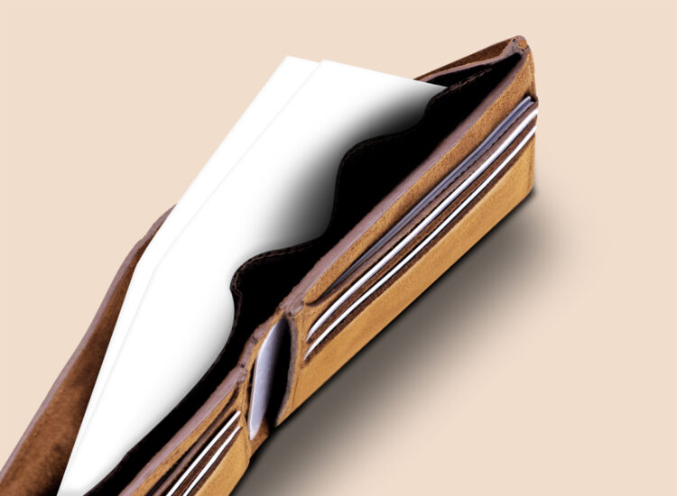 Alfonso Slim Wallet Brown Bank Note Compartment