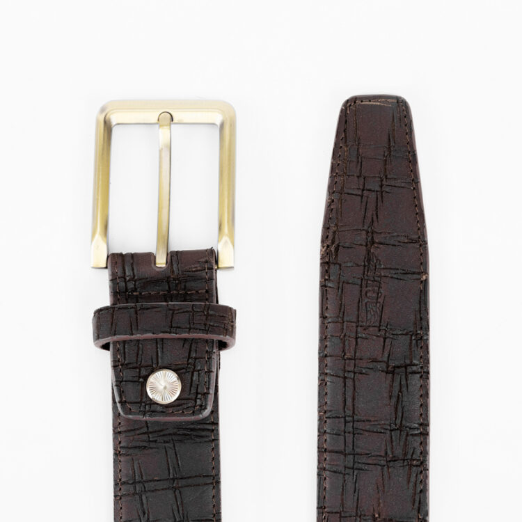 Promo G1359 Brass Belt Brown Back